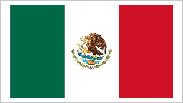 墨西哥进口